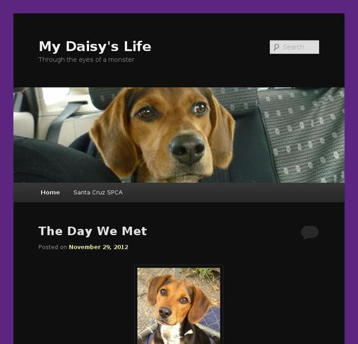picture of mydaisyslife.com