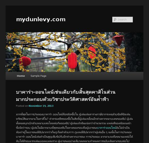 picture of mydunlevy.com