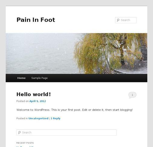 picture of paininfoot.net