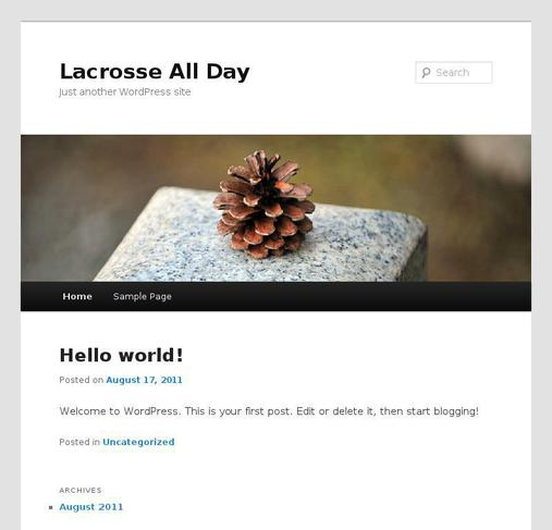 picture of lacrosseallday.com