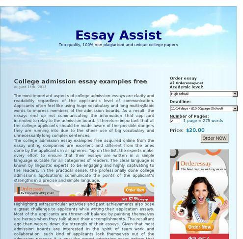 Website Essay