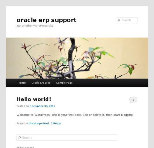 picture of oracleerpblog.com