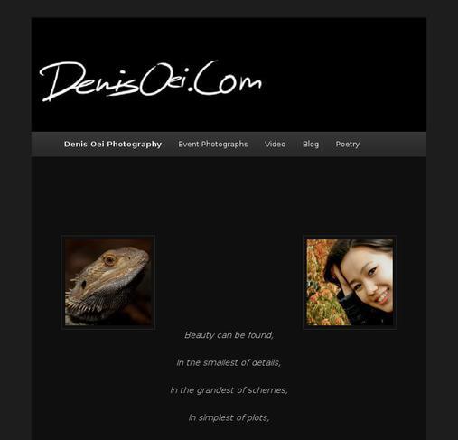 picture of denisoei.com