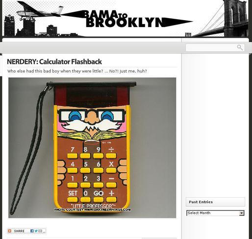 picture of bamatobrooklyn.com